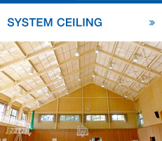 SYSTEM CEILING